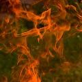 fire accident at panjagutta