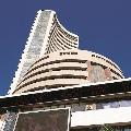 Stock markets collapses amid raise of corona cases
