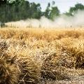 farmers flexies in medak
