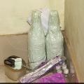 Snake Venom Worth Over 1 Crore Seized In Odisha 6 Arrested