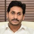 Jagan expressed shock over Vijayanagaram road accident