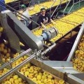 Centre approves PLI Scheme for Food processing industry