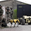 French army tests robot dog Spot for battlefield