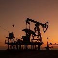 Oil prices slip with bumps in economic revival