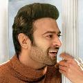 Lovely Look from Prabhas Radheshyam