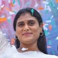 Police gives permission for YS Sharmila hunger strike