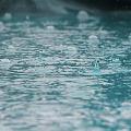 Satisfactory Rains This Year IMD Forecast