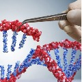Triple Mutation Variant In India Emerges As Fresh Worry