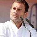 rahul gandhi slams govt