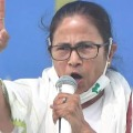 Dont worry about corona go and vote calls mamata to bengal people