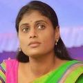 YS Sharmila slams CM KCR
