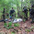 Two naxals died in Maharashtra