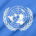 india rejects un help