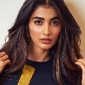 Pooja Hegde comments on Salman Khan
