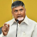 Case Against Chandrababu Is Contempt of court says TDP