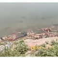 Centre issues notice to Uttar Pradesh and Bihar after dead bodies spotted at Ganga River