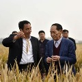 Chinas Yuan Longping dies rice research helped feed world