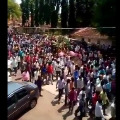 Hundreds of people were seen at the funeral of a horse in the Maradimath area of Belagavi