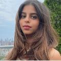Social media user wants to marry Sharukh Khan daughter Suhana