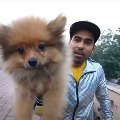 Delhi police arrests youtuber after he tied balloons to his dog