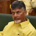 TTDP leaders urge chandrababu to focus on Telangana