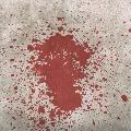 honour killing in Chittoor dist