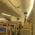 USA bound Airindia plane returns Delhi airport after bat entered into flight cabin