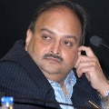 Mehul Choksis brother bribed Dominicas leader of opposition