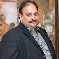 How Mehul Choksi was trapped by