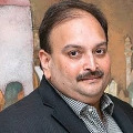 Dominica PM terms Mehul Choksi Indian citizen says courts will decide on fugitive
