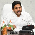 CM Jagan review and discuss in corona third wave