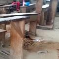 Attack on Camaron School 8 childrens Died