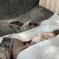 Huge explosion in Singareni mines