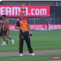 Sunrisers Hyderabad won the toss and elected bowl first in crucial match