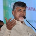 Chandrababu questions YSRCP leaders in two bills