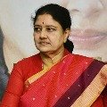 Sasikala says AIADMK is her own party