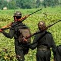 Firing at Andhra and Odisha border