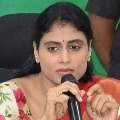 TRS high command orders its cadre not post any comments on YS Sharmila