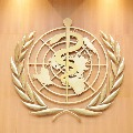 WHO team to visit China in January to investigate coronavirus origin