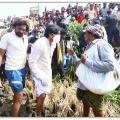 Janasena tweets ahat agriculture labour Suresh talked to Pawan Kalyan