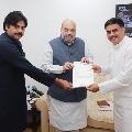 Janasena chief Pawan Kalyan met union home minister Amit Shah
