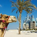 Indians tops Dubai real estate investments charts