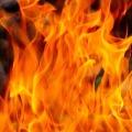 Ten Babies Killed In Fire At Maharashtras Bhandara govt Hospital
