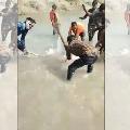 Gangetic dolphin beaten to death in UPs Pratapgarh