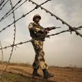 Rajasthan boy mistakenly cross indian border and entered in pak