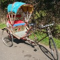 3 Migrant workers travel to Bihar from Delhi by cycle rickshaw