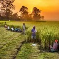 Kanna Lakshminarayana tells Centre deposits two thousand rupees into farmers accounts