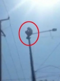 Man climbed street light pole for liquor bottle