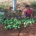 Prakash Raj posts an adorable pic of his son