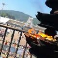 Two Days Dhanvantari Yagam Started in Tirumala